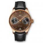 IWC-IW500124